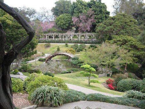 10 sitios rom nticos para ir con tu novia en valencia - Jardin botanico valencia ...